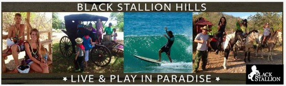 black stallion tours